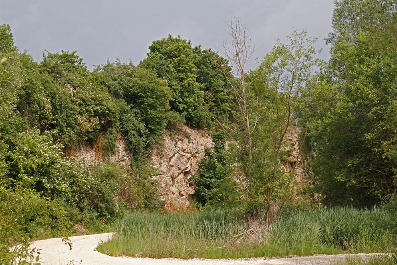 Steinbruch bei Hainsfarth