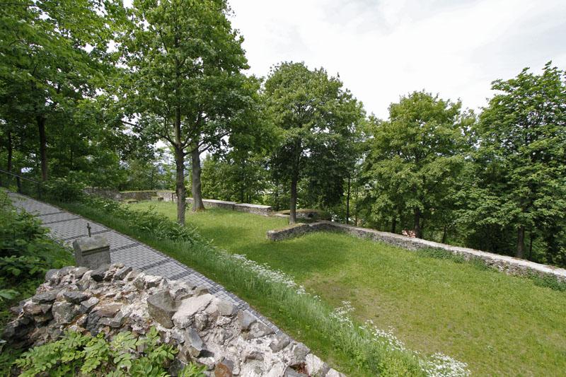 Blick auf die Ruine auf dem Parkstein